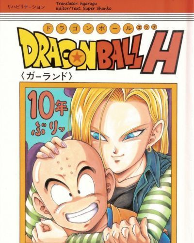 Dragon Ball H