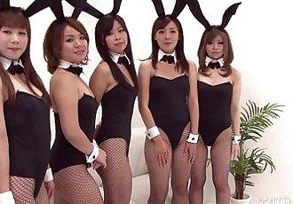 41Ticket - Japanese Bunny Orgy - 5 min HD