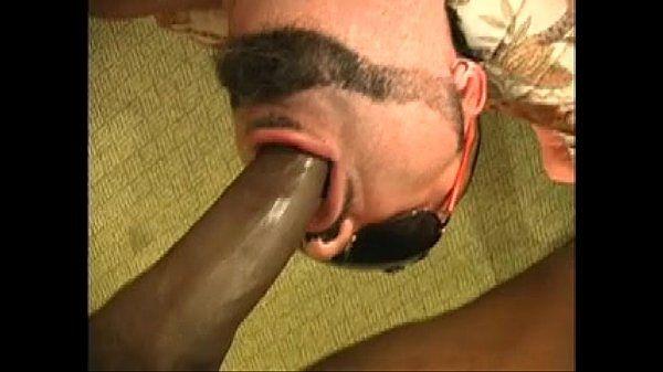 BAHAMAS BLACK BREEDS LATIN AZZ RAW1-2
