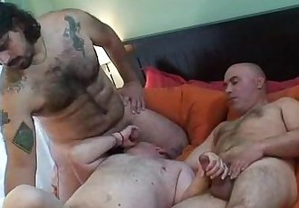 Horny hung bears fucking